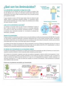 ajinomoto_amino-acid-technologies_latin-america_English-to-Spanish-Raleigh 3