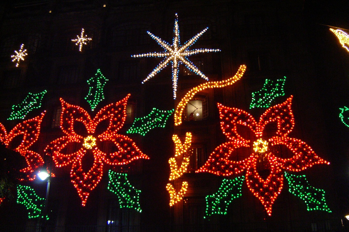 the christmas eve flower poinsettias in hispanic culture english to spanish raleigh - How Is Christmas Celebrated In Mexico